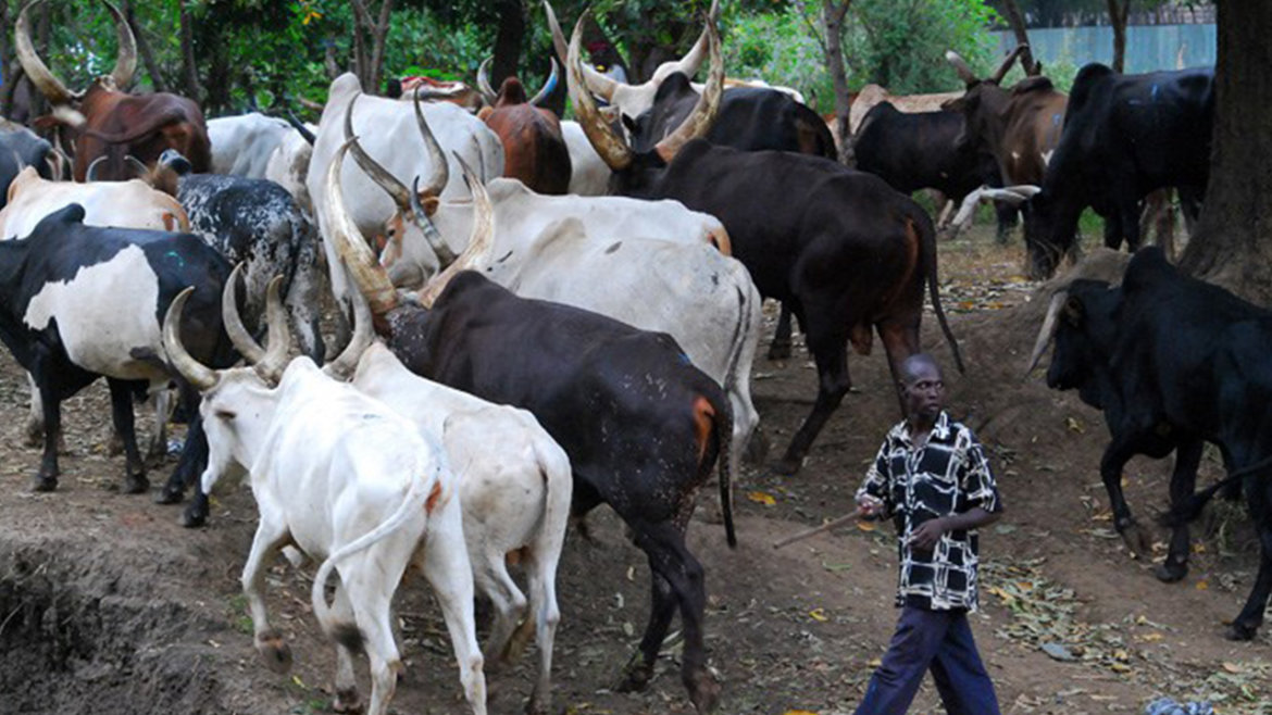 Cattle-Herdsmen, South East Governors, KWARA STATE