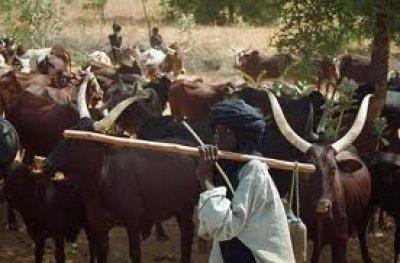 fulani-herdsmen, Police, Bayelsa,