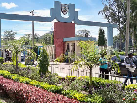 """objective of cultism in nigeria university Find out the main ⛹ types of cultism in nigeria and their symbols  the first """"secret cult"""" in the nigerian university system  have their own objectives ."""