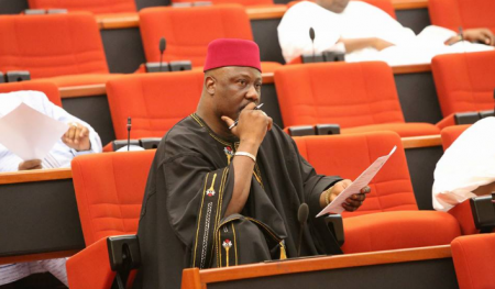 Dino Melaye,Tribunal, Senate, Kogi West,