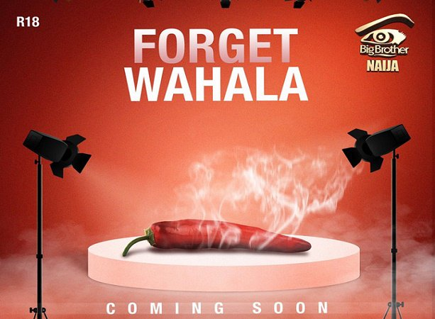 BBNaija Season 4, Forget Wahala,