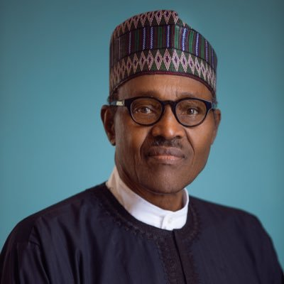 President Buhari, Prof Olayiwola Fagbenle, Energy Expert,